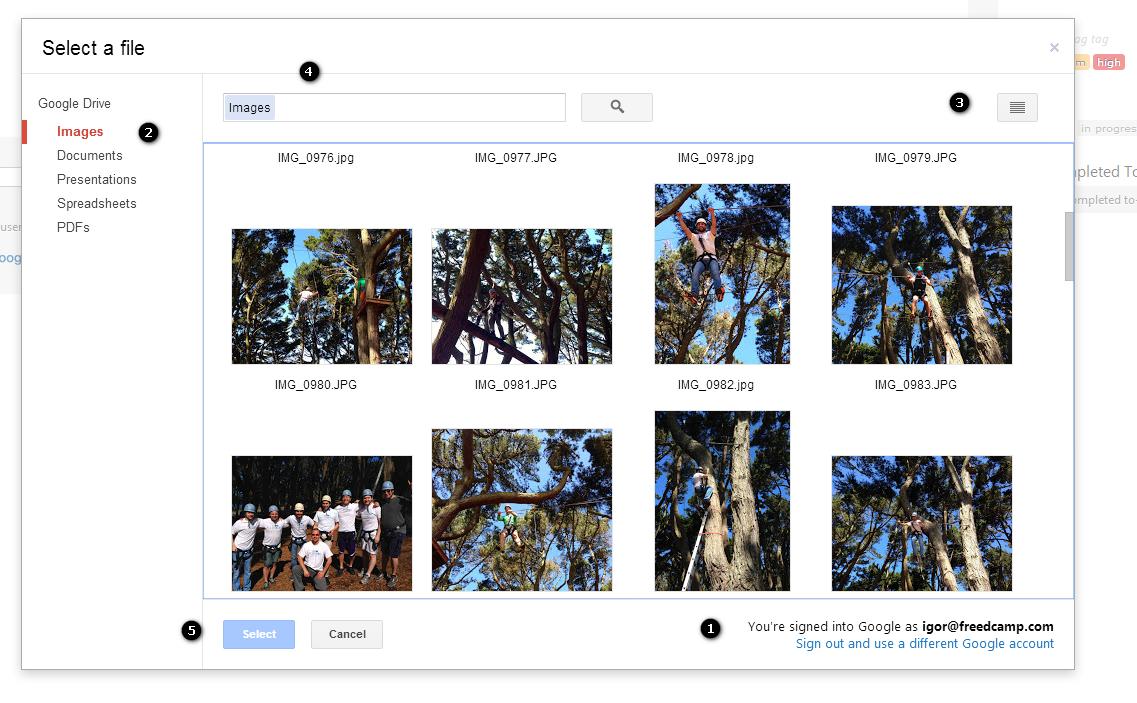 google_drive_file_selector