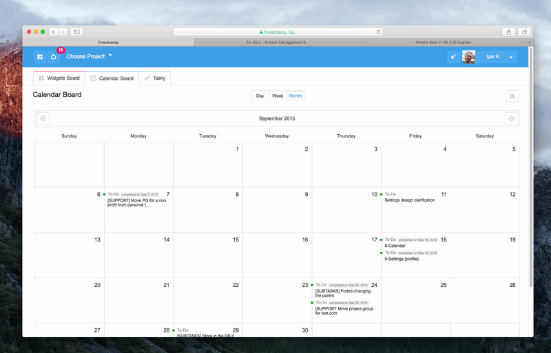 Global Calendar in Freedcamp